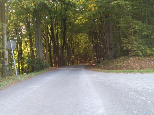 Abfahrt nach Frankendorf