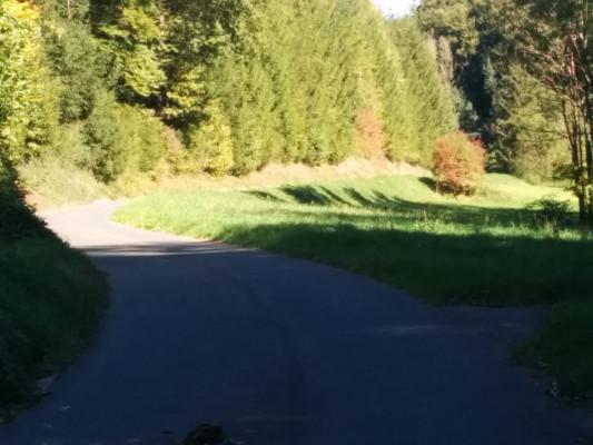 Danach  flach in Richtung Bieberbach.