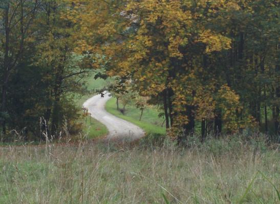 Ein Blick zurück in Richtung Bodendorf !