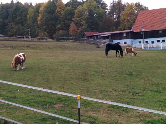 Der Anstieg started in Moritzmühle, ..